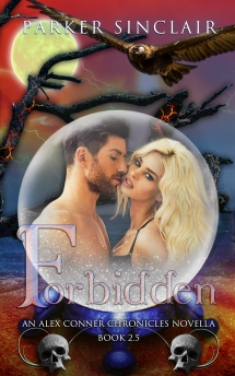 FORBIDDEN EBOOK COVER